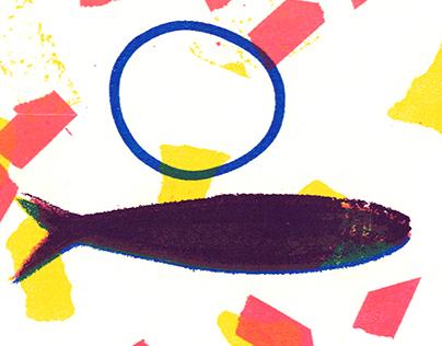 Nasello & sardina