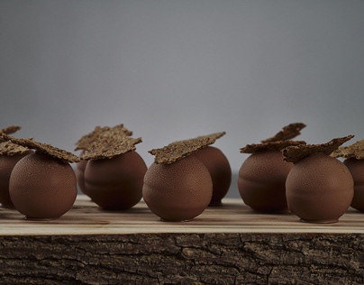 Chocolate & Rye Spheres – Food Photography