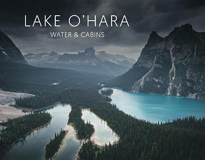 Lake O'Hara // Water & Cabins