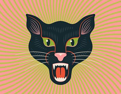 Cat - Revisited