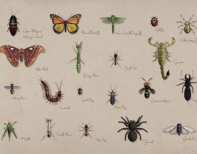 Xtreme Bugs