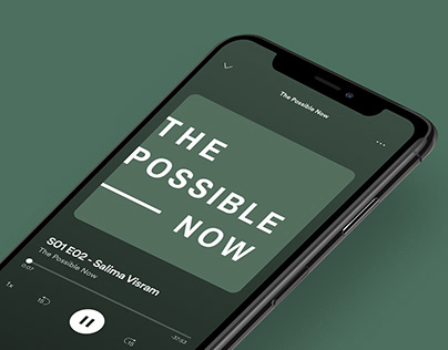 The Possible Now Podcast