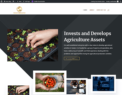 Invest and development Websites