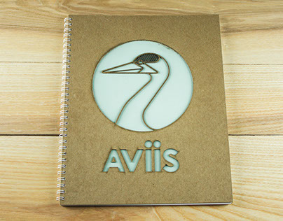 Aviis : Typography + Branding Class