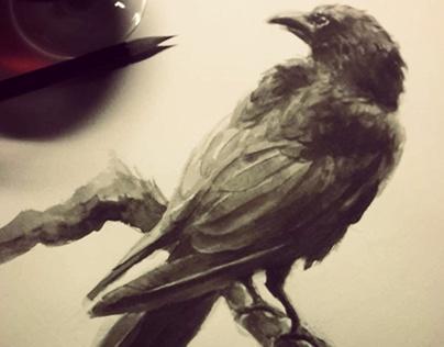 """""""Bird"""" fairytale studies"""