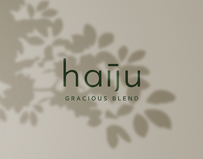 Haiju Identity & Packaging