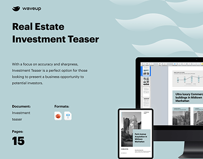 Real Estate Investment Teaser