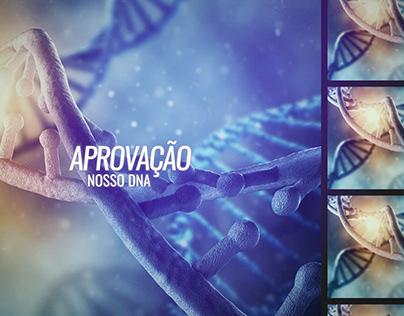 Logo - Harvard Law School Brazilian Studies Association on Behance