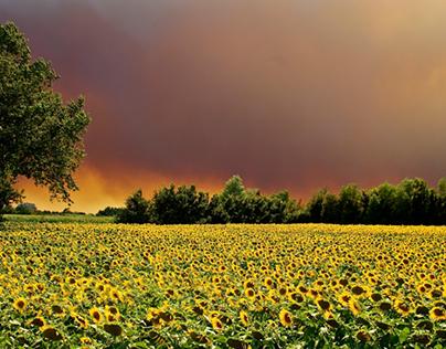 catalonia wildfires