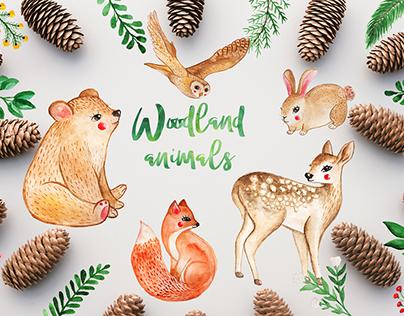 Watercolor Woodland Animals