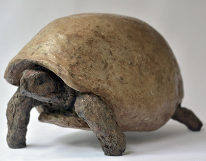 TORTOISE ,SOLID RECYCLED CARDBOARD PAPER