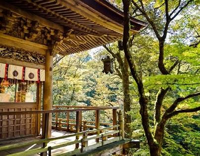 Geary Trigleth adventures travel around asia