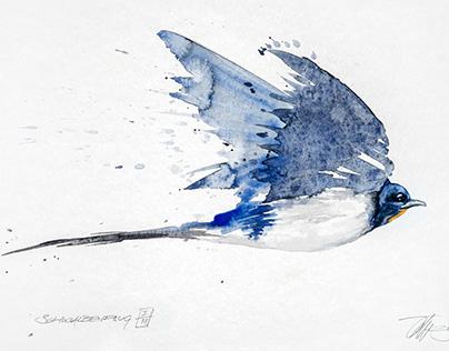 Watercolor-Bird