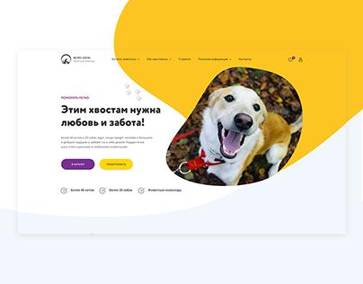 Website for local animal shelter