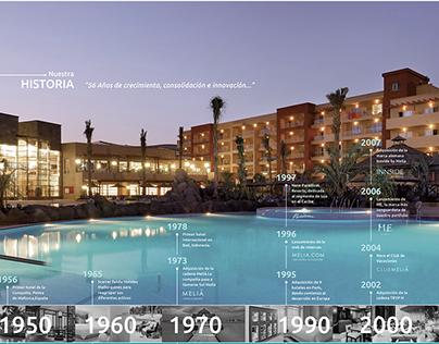 Memoria y balance- Hoteles Meliá