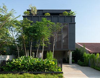 ipli Architects: A House Above