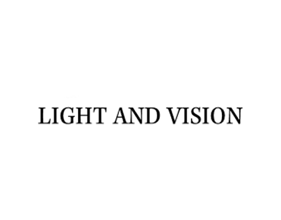 Light And Vision Book