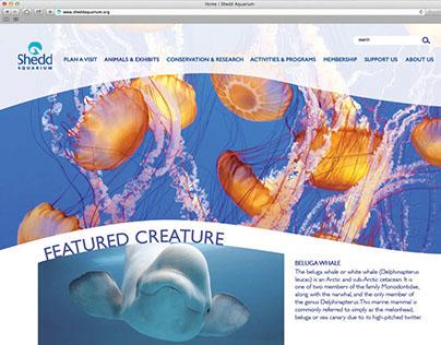 Shedd Aquarium Website Redesign