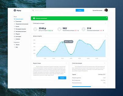 Mipay - Dashboard and website design