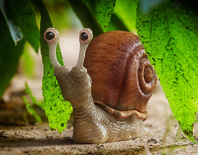 Snail Sculpt