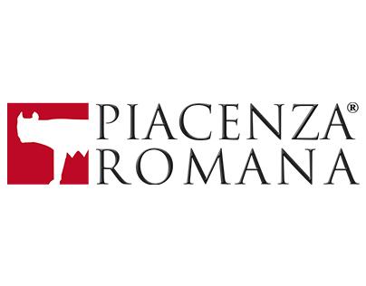Progetto Piacenza romana