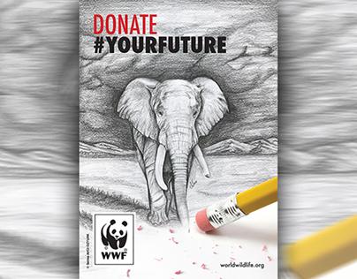 Creative Advertising - WWF (Assessment Task)