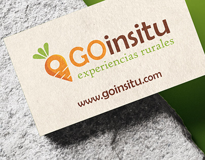GOinsitu Corporate ID design & web Design.
