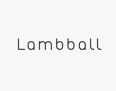 lanmbball品牌VI设计