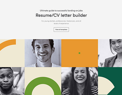 Switch Brand Identity and UX/UI Landing Page