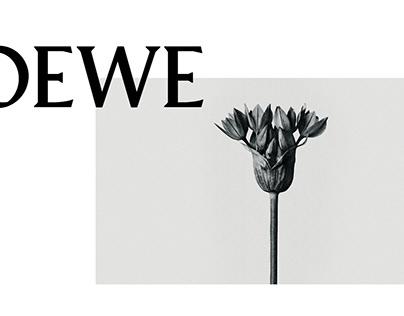 LOEWE | The Powerful of Close-Ups Arts
