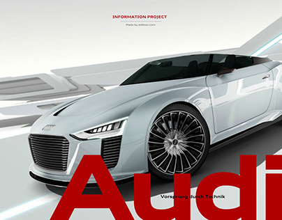 Audi Information Project