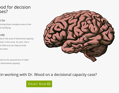 Decisional capacity web page imagery