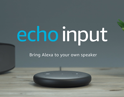 Amazon Echo Input Device Video
