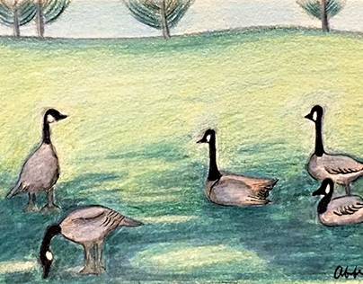 Mini Landscapes with Geese