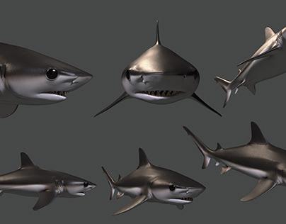 bebé tiburón de arrecife