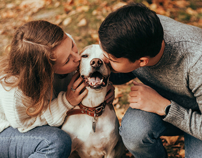 Love Story with dog