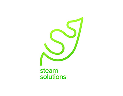 Steam Solutions