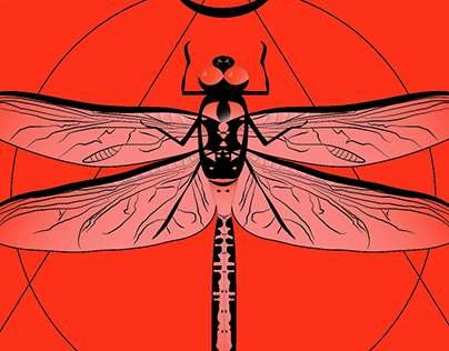 THE INSECT ILLUSTRATION SERIES