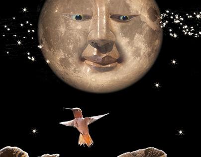 Cheshire Moon