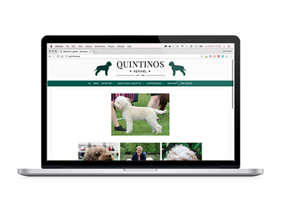 Quintinos – Re-brand and web design