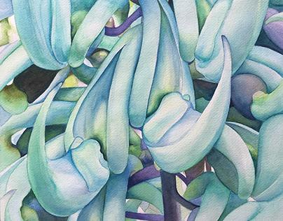 Jade Vine No. 1