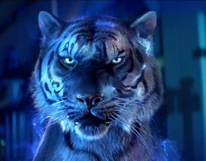 Coral - Vegas Tiger