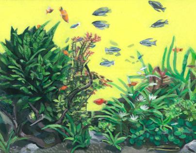 Aquarium series