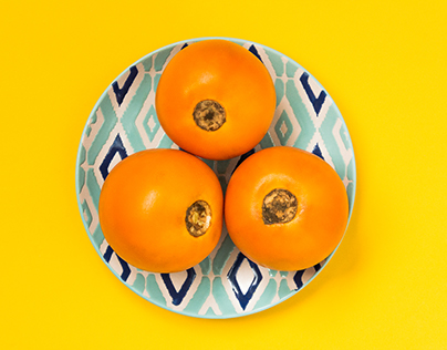 Food Photography - Colombian Fruits