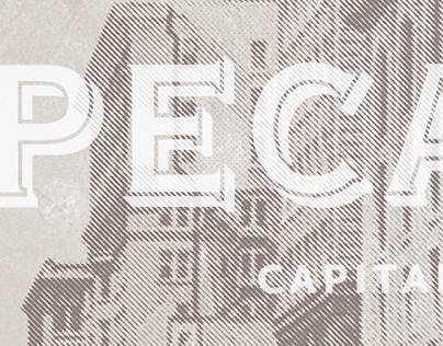Pecan St. Capital