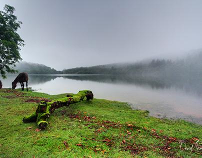 Burrator Reservoir, Dartmoor National Park
