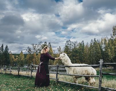 North Karelia. The Kormilo village (Khutor)