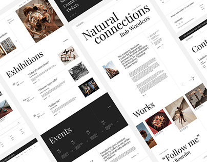 Website redesign concept / The Lumiere Brothers Center