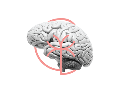 Carina Barata Psicóloga | Visual identity