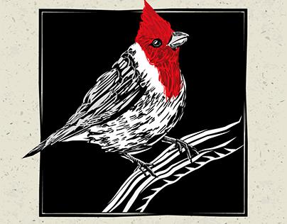 Ilustração inspirada em xilogravura